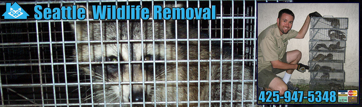 Seattle Wildlife and Animal Removal